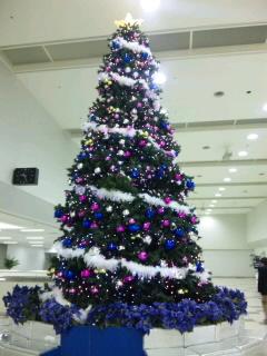 福岡空港クリスマスツリー